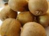 Kiwifruit-1