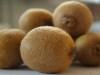 Kiwifruit-12