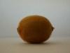 Kiwifruit-8