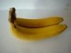 banana-7